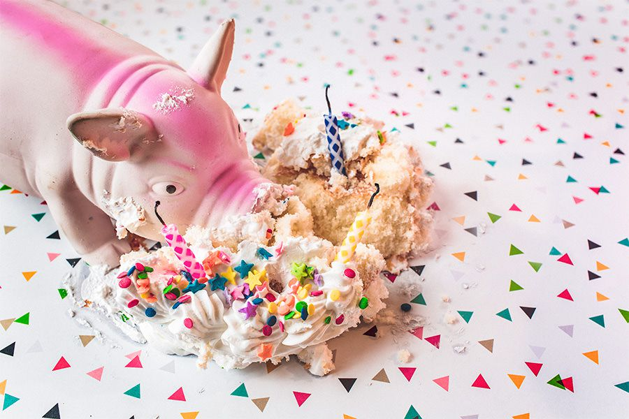 Do more design toy pig eating a birthday cake