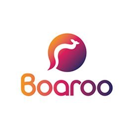 Logo Design UK - Boaroo