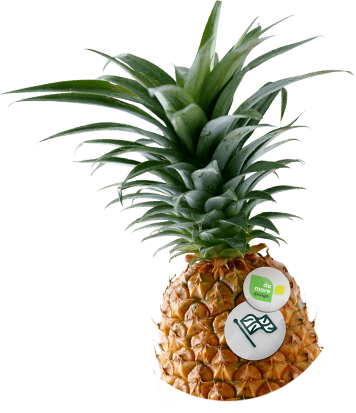 A pineapple with two badges. A domoredesign badge and a UK flag logo